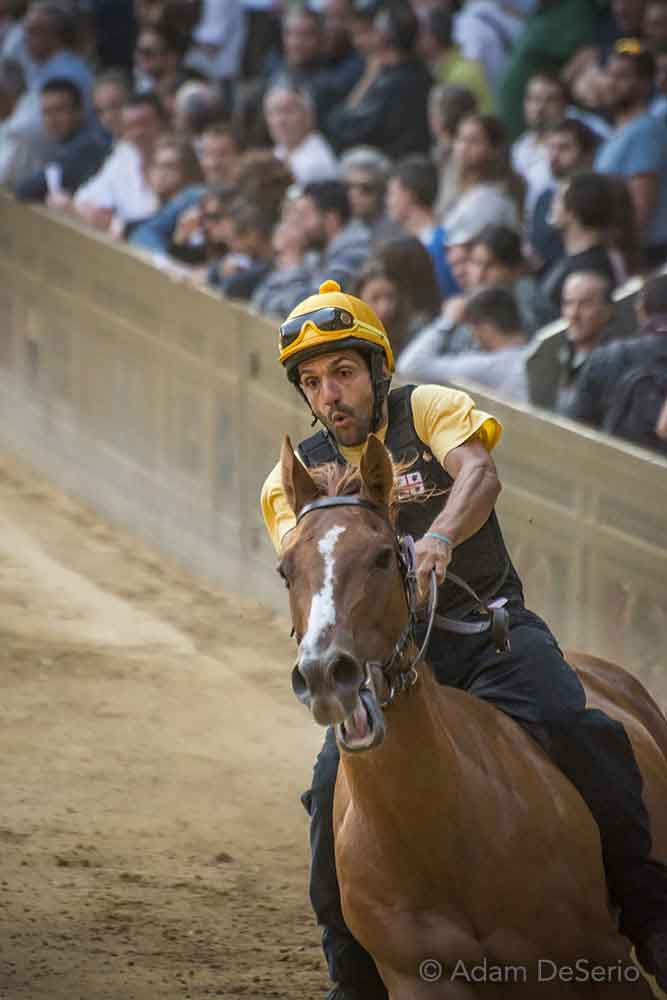 Close Call, Palio, Siena, Italy