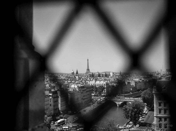 Eiffel Tower Window, Paris