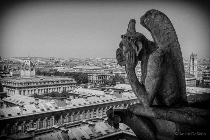 Notre Dame Monster, Paris