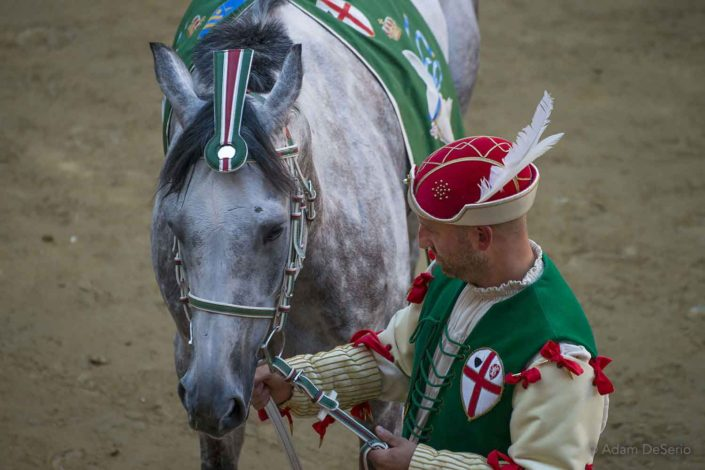 Oca Horse, Palio, Siena, Italy