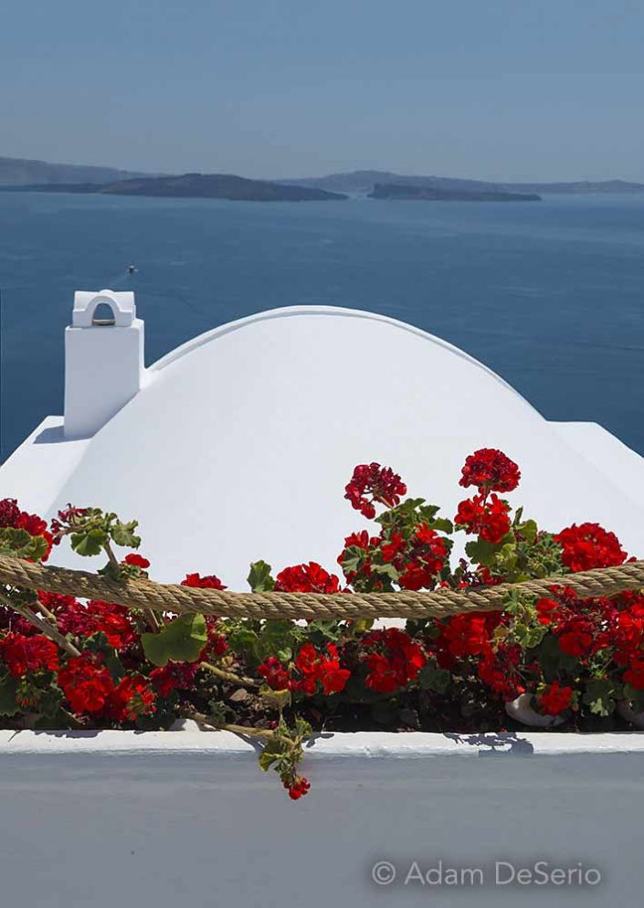 Red Flowers, Santorini