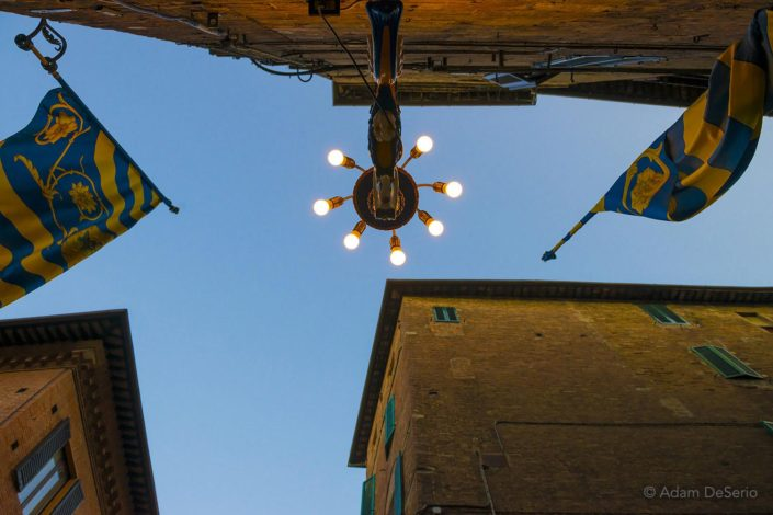 Tartuga Lamp, Palio, Siena, Italy