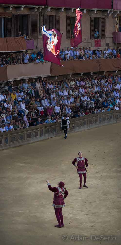 Throw The Flags, Palio, Siena, Italy