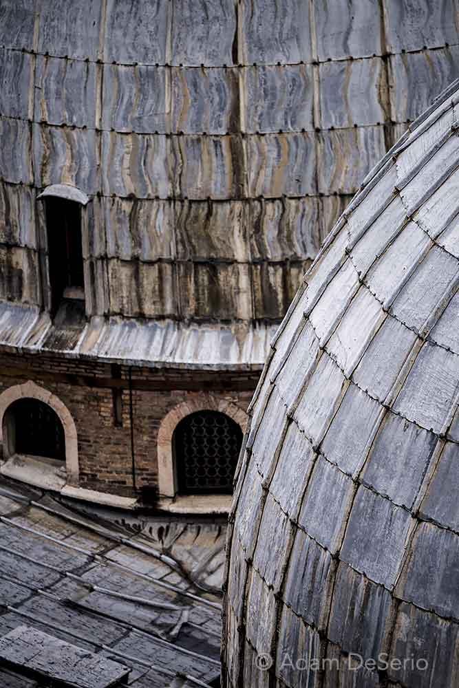 Venice Domes