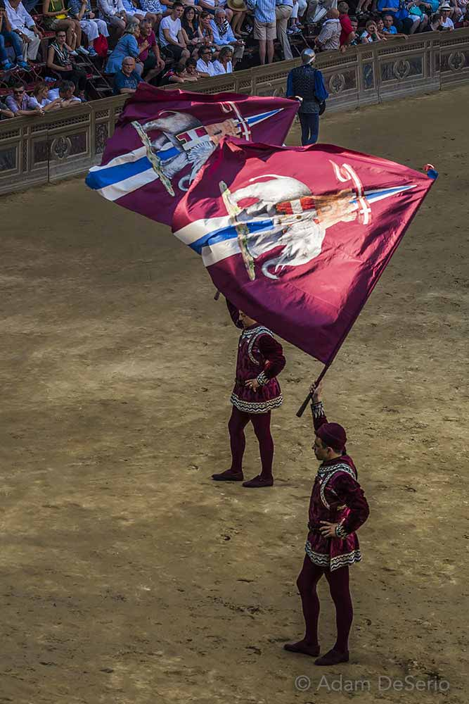 Wave The Flags, Palio, Siena, Italy