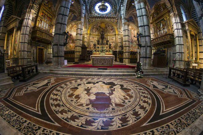 Siena Inside Duomo Floor, Italy
