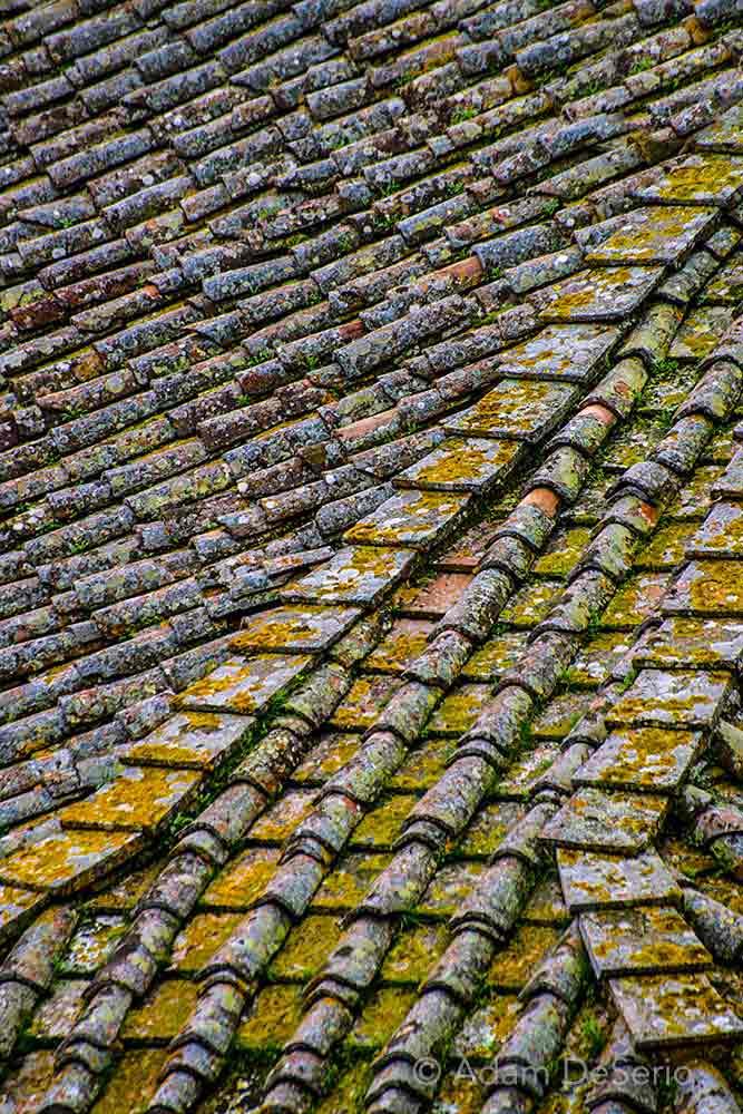 Siena Rooftop Closeup, Italy