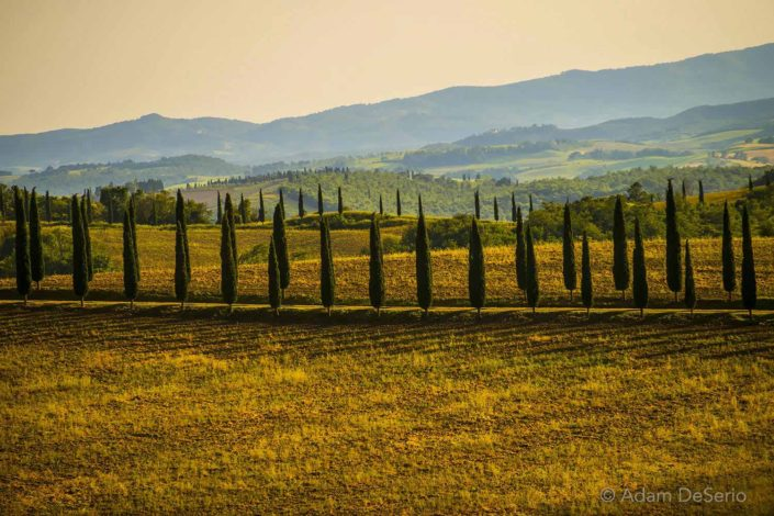 Solders In The Summer, Tuscany