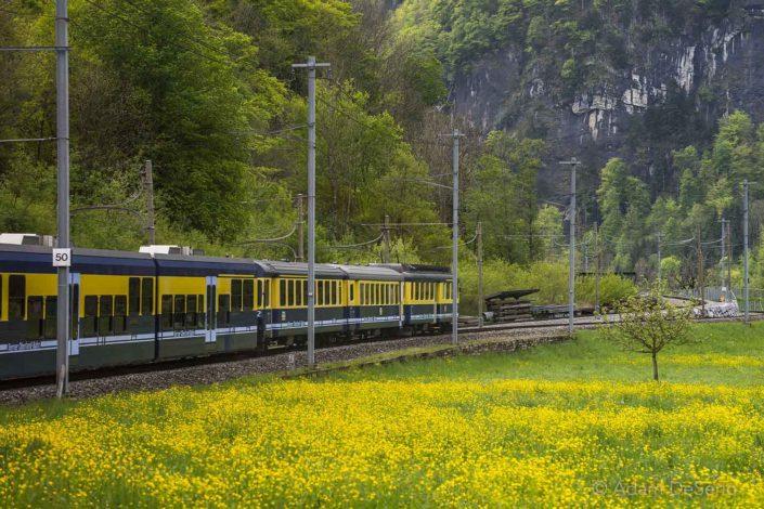 Swiss Trainride
