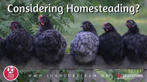 considering homesteading