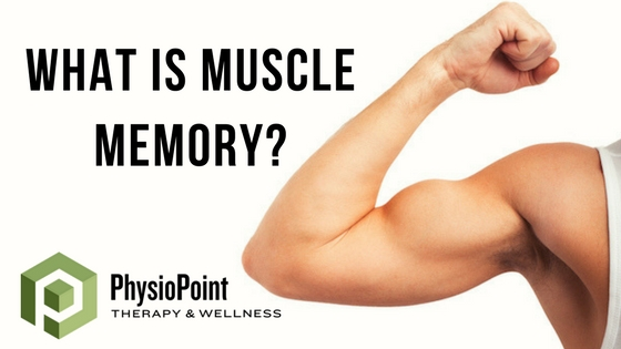 What is Muscle Memory?