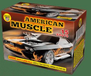 American Muscle - 15 Shots - 200 Gram Aerials - Fireworks