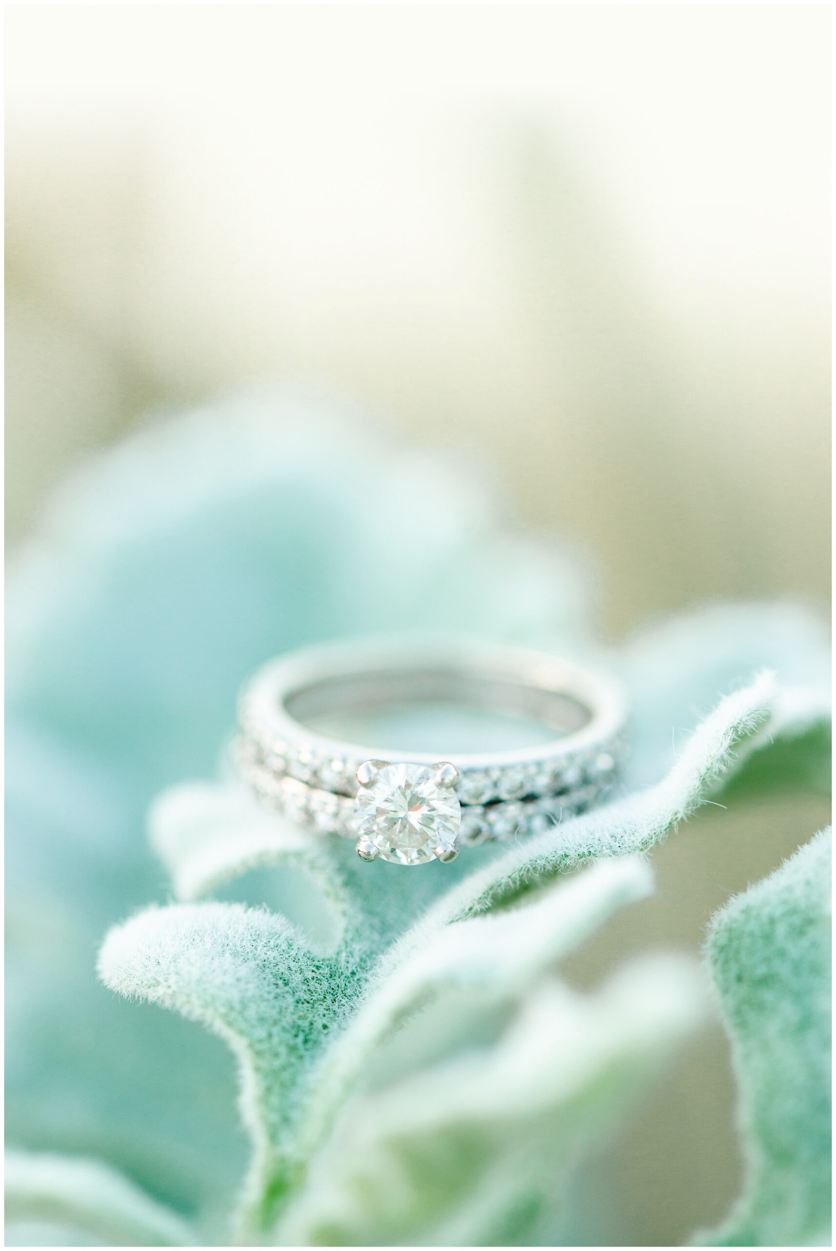 Wedding ring detail on bouquet greenery