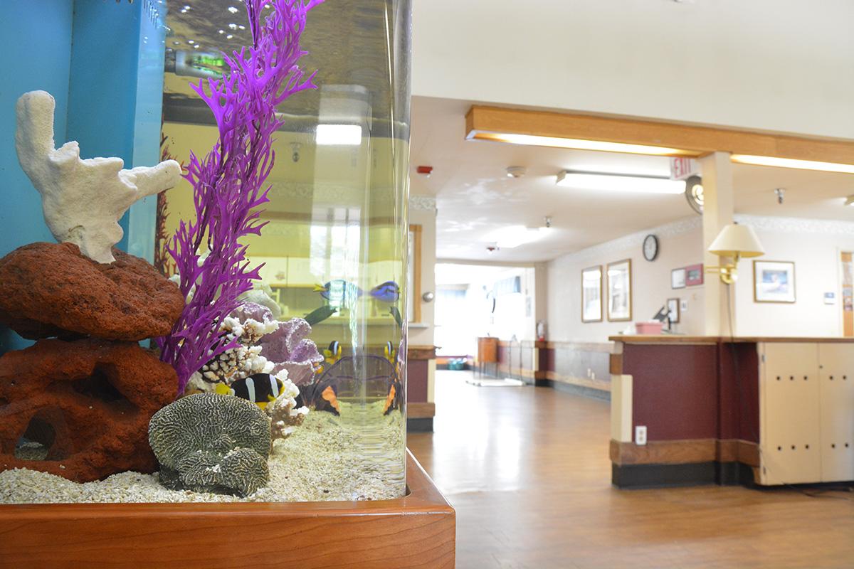 Benson Dayroom Fish Tank