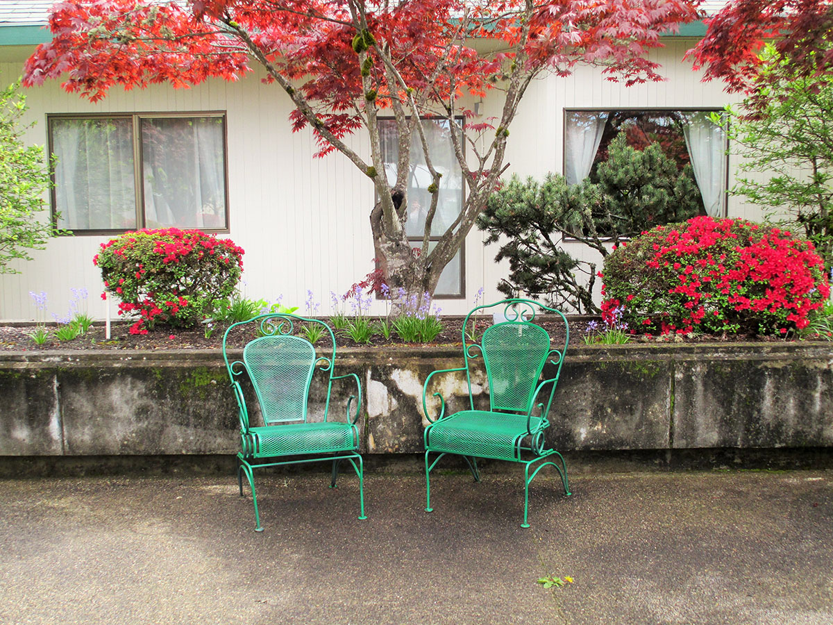 Umpqua Chairs