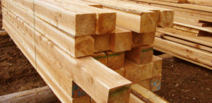 lumber repeat violations