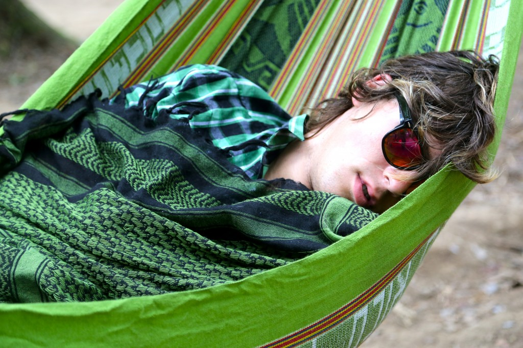 electric forest glasses nap