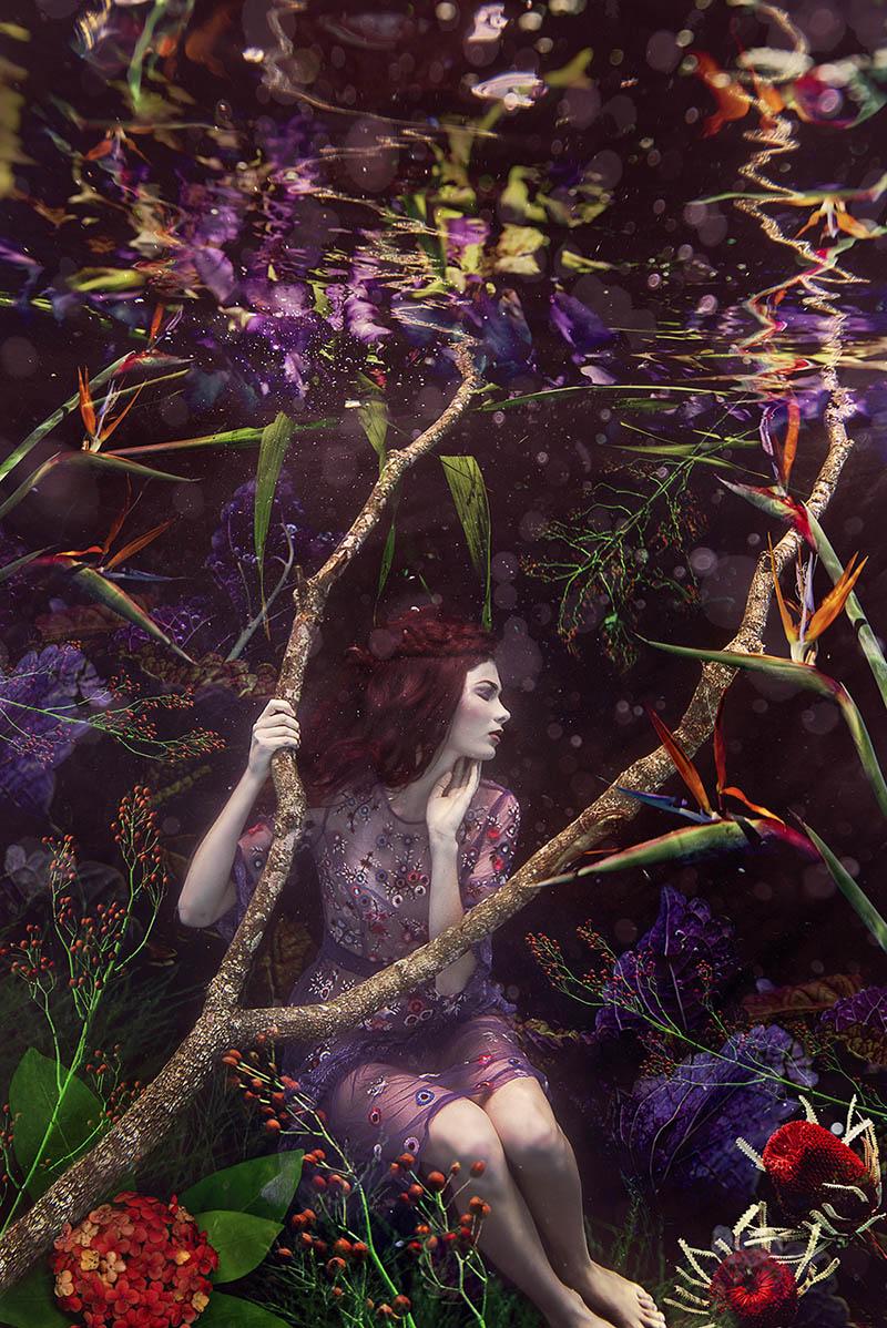 beth mitchell underwater photography