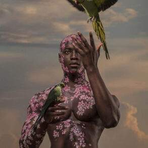 4826_Josh Brandao-photography-figure-birds-fantasy