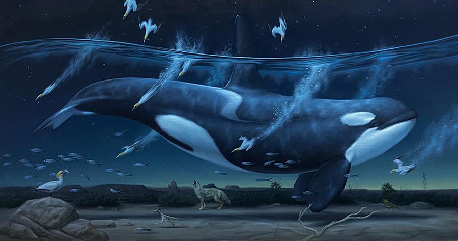Phillip Singer surreal killer whale painting