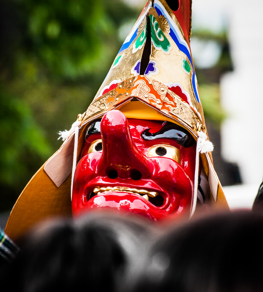 Festival Day-47