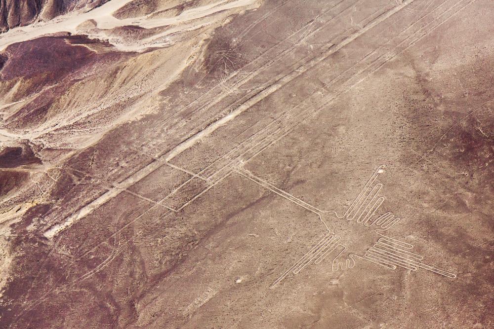 Nazca-9246