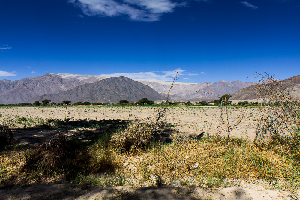 Nazca-9305