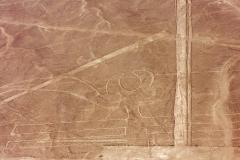Nazca-9274