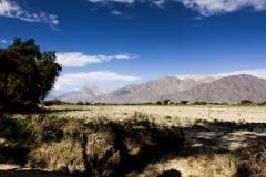 Nazca-9307