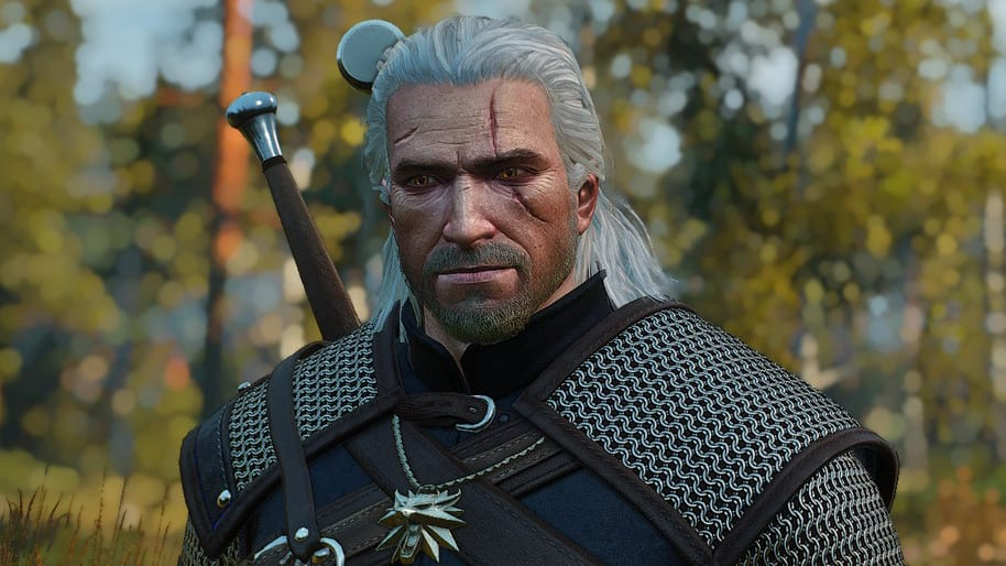 The Witcher 3 mod