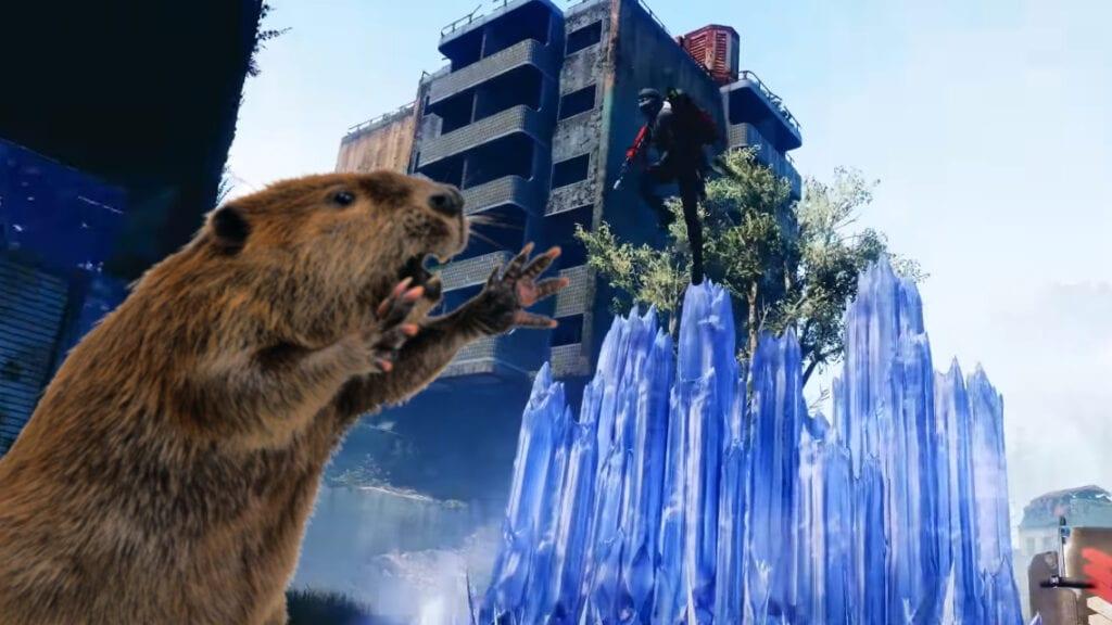 Destiny 2 Beaver Server Issues Bungie Valve