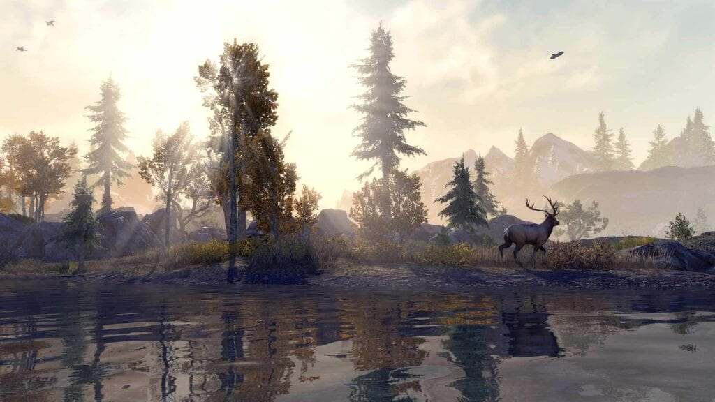The Elder Scrolls Online Enhanced Next-Gen Update