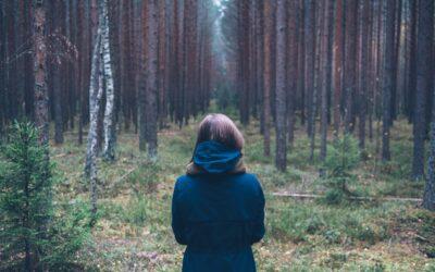 Therapies for trauma survivors