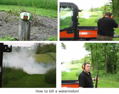how to kill a watermelon