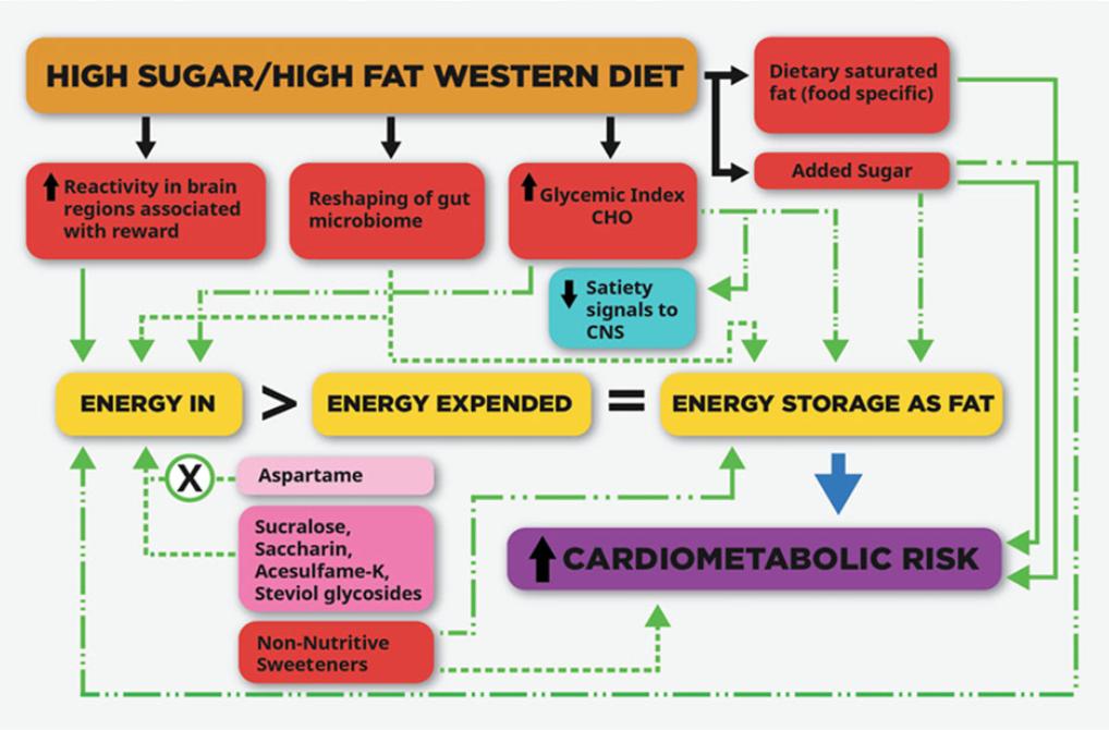 "Beyond Calories: ""The scientific community agrees: A calorie is NOT a calorie"""
