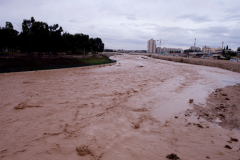 Wadi Flood 3