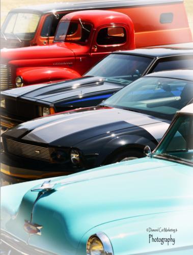 Car show line up