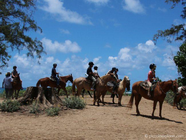 Turtle Bay Resort Horseback Riding Oahu
