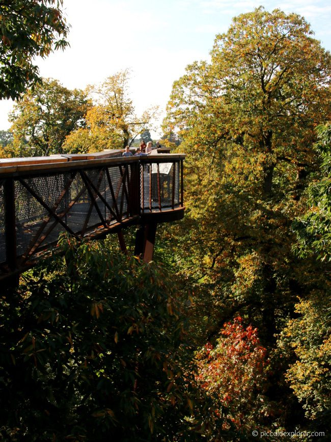 Treetop Walkway at Kew Gardens