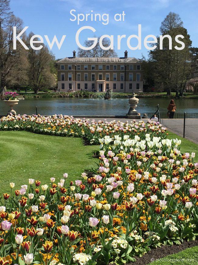 Spring at Royal Botanical Gardens of Kew, London