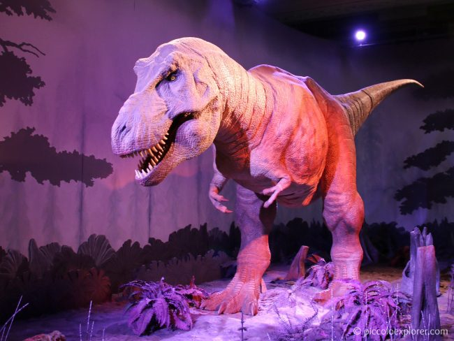 Family Friendly London Museums - Natural History Museum
