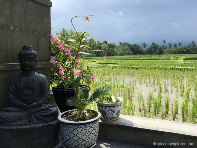Rice Paddies by LUXE Villas Ubud, Bali