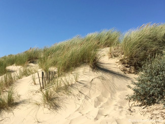 Camber Sands East Sussex