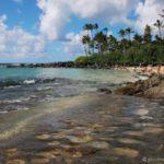 Laniakea Beach, North Shore Oahu