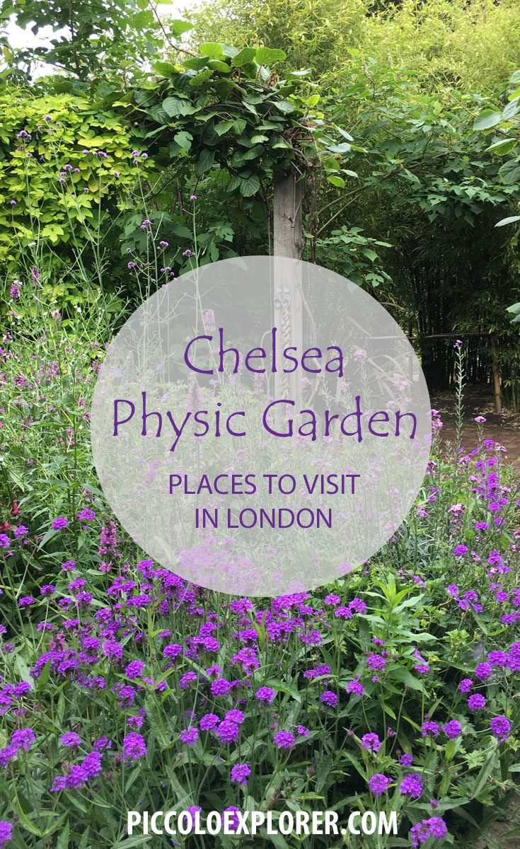Chelsea Physic Garden - Places to Visit in London