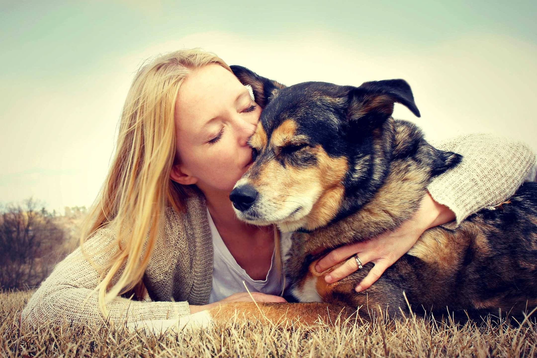 person, dog, kiss, love, shepherd mix