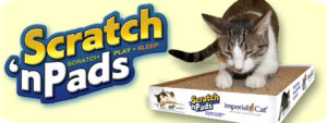 cat, donation, scratchers, pads, toys, imperial cat