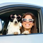 person, dog, car, driving, travel, transport, road trip, volunteer