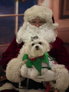 Santa Photos #1 @ South Jersey Regional Animal Shelter