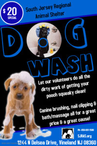 DOG WASH @ South Jersey Regional Animal Shelter